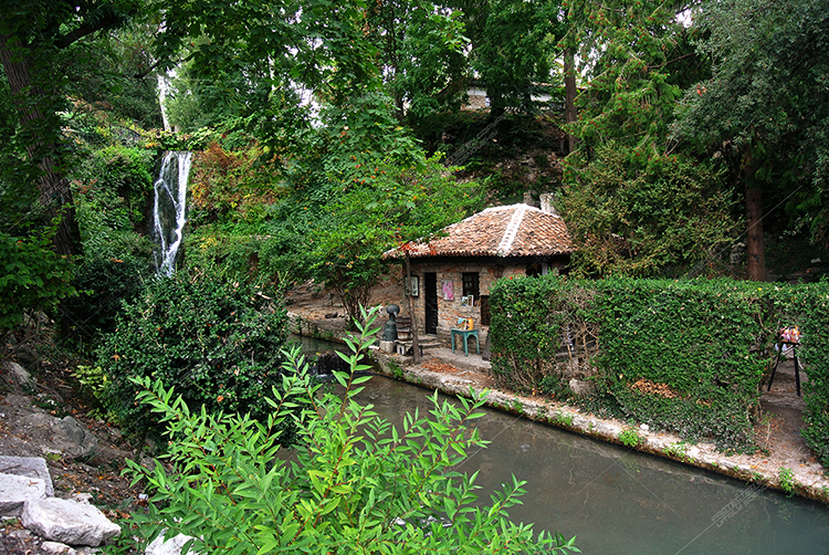 Picturesque parks of Bulgaria. Many types of vegetation example image 1