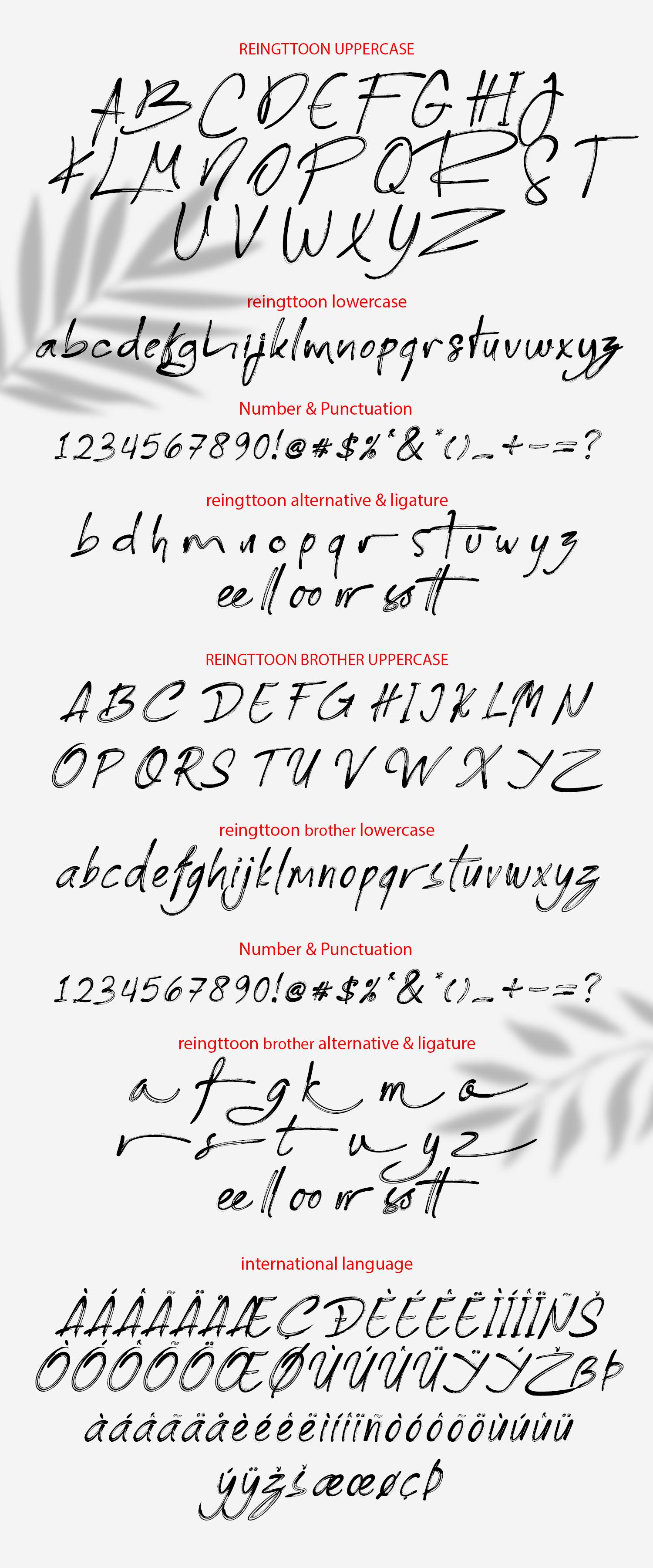 Reingttoon Handwritten Brush example image 9