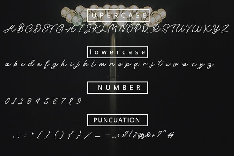 Moelya - Script Font example image 3