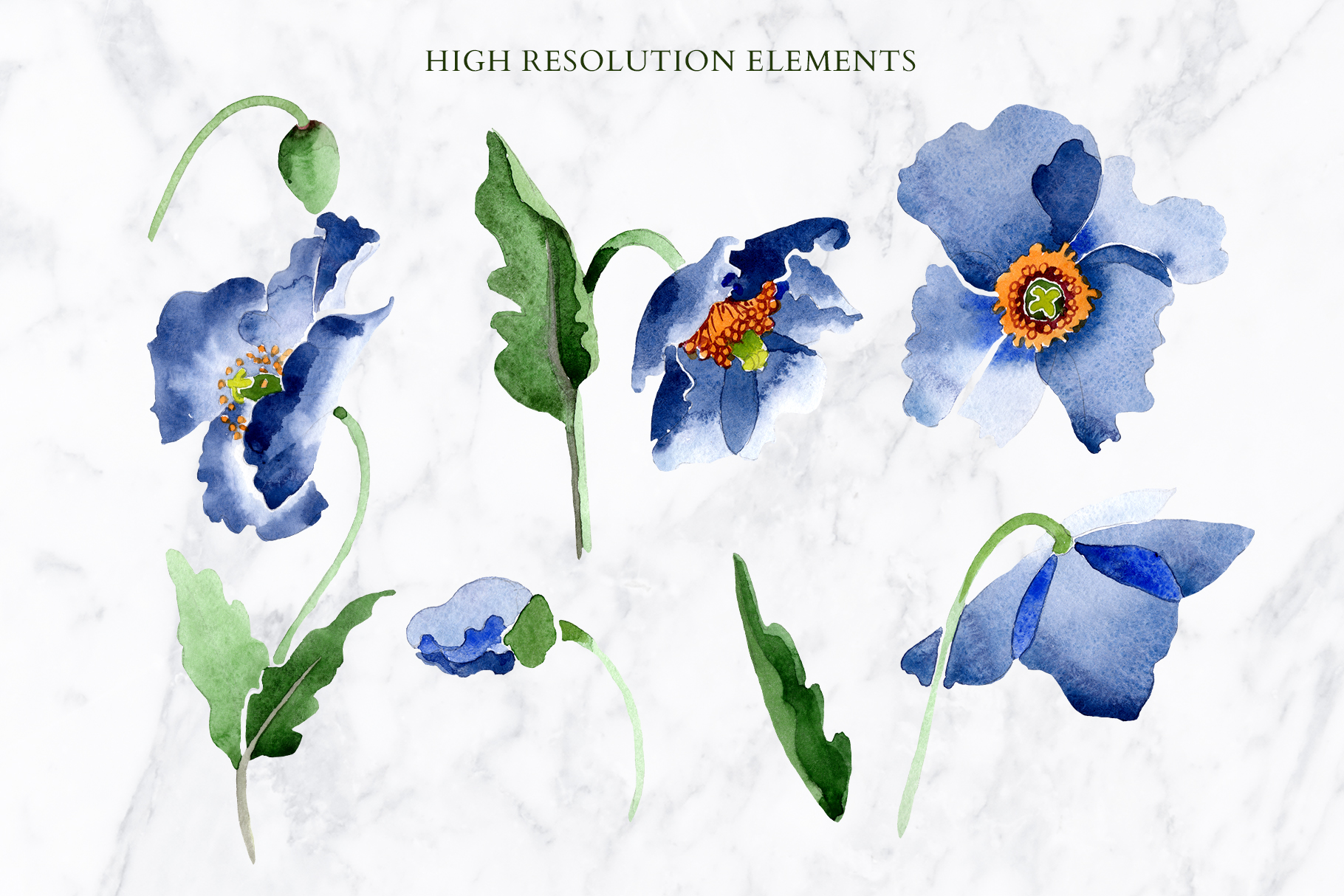 Bouquet of blue poppies Venice watercolor PNG example image 2