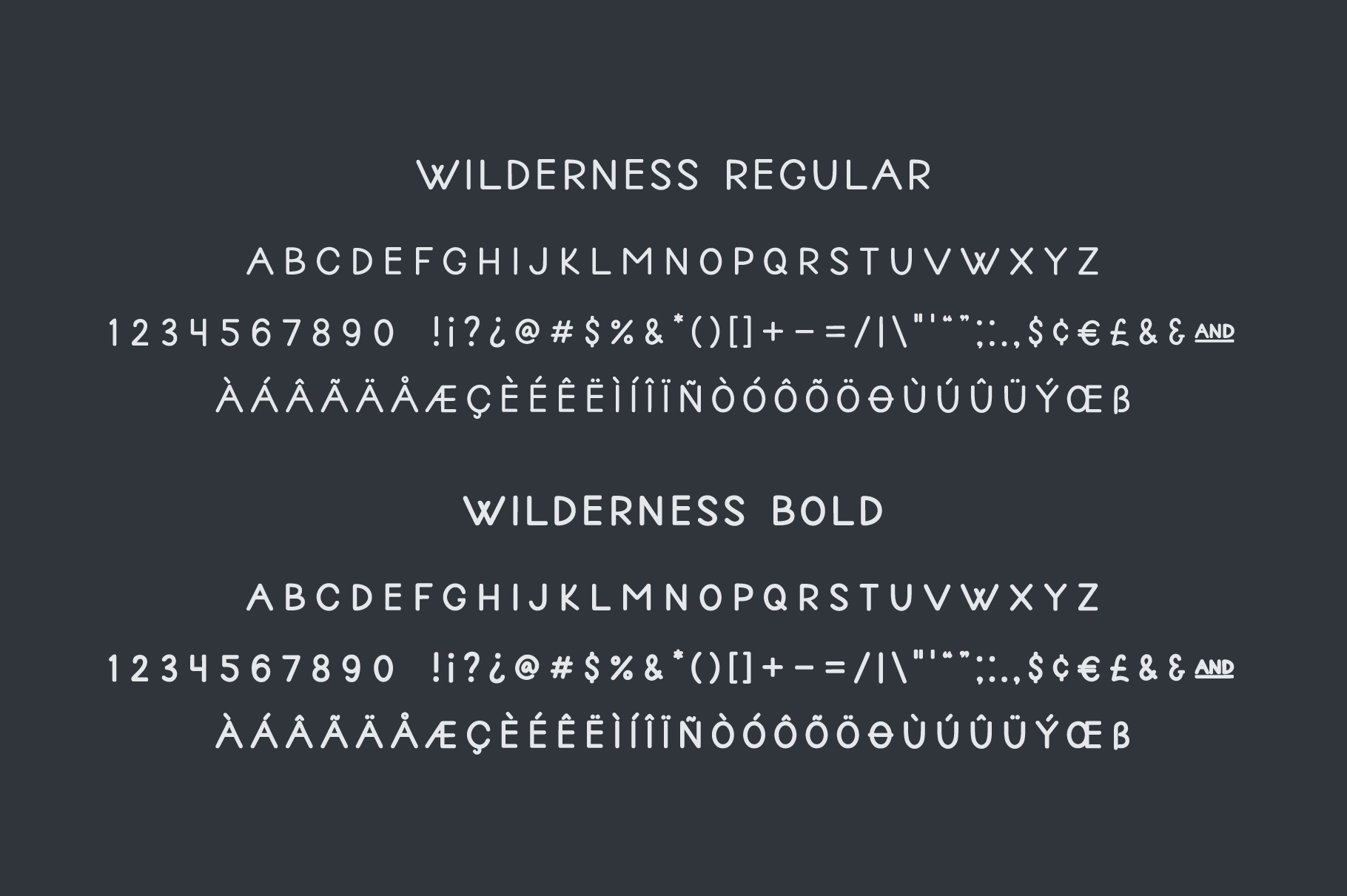 Wilderness | Handwritten Sans Serif example image 6