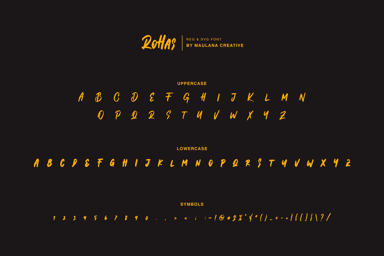 Mathew Rohas Brush Font Duo example image 3