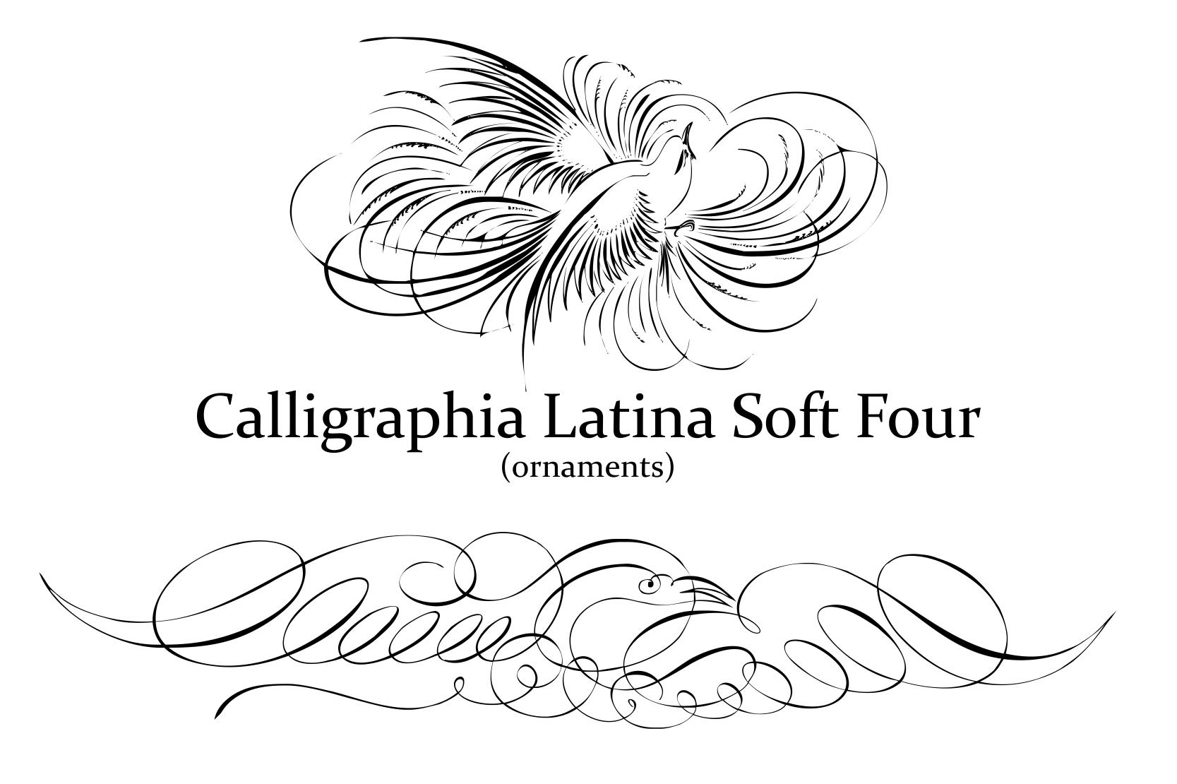 Calligraphia Latina Soft 4 example image 1