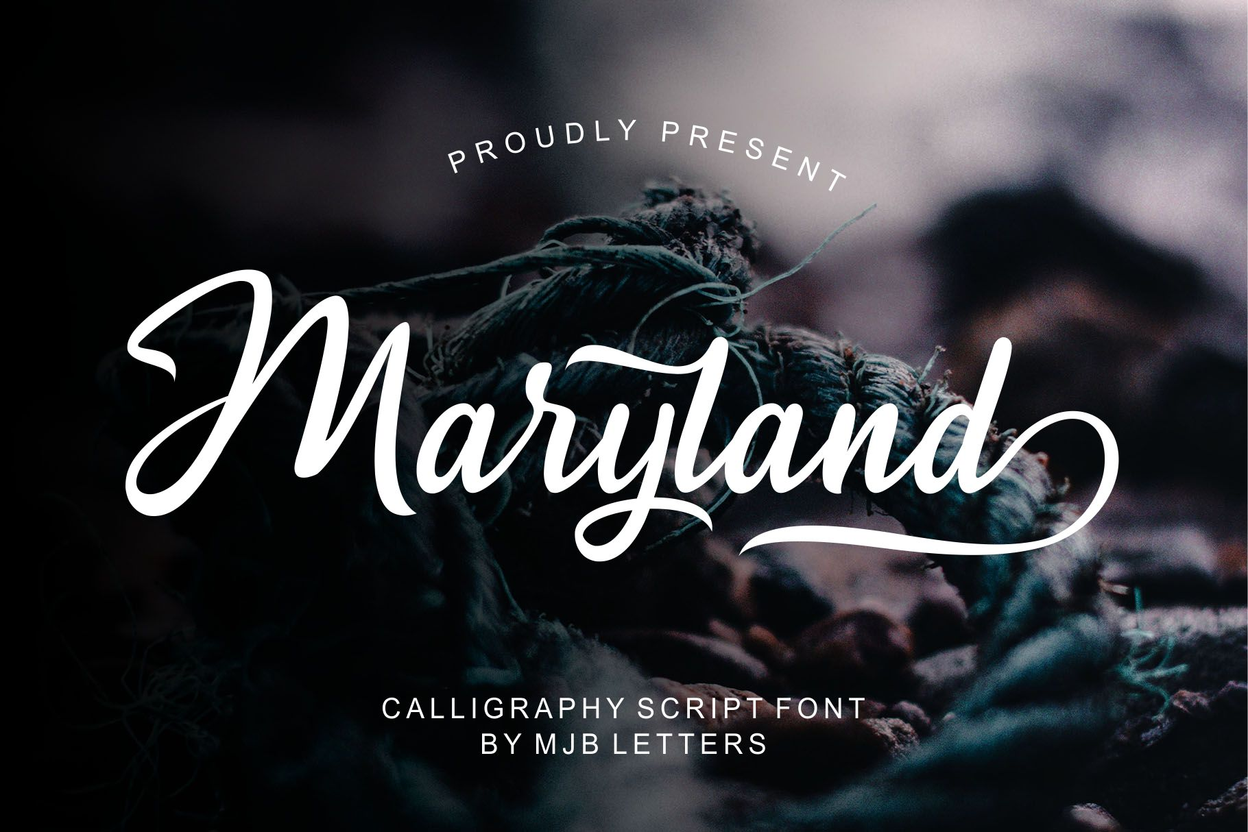 Maryland Calligraphy Script example image 1