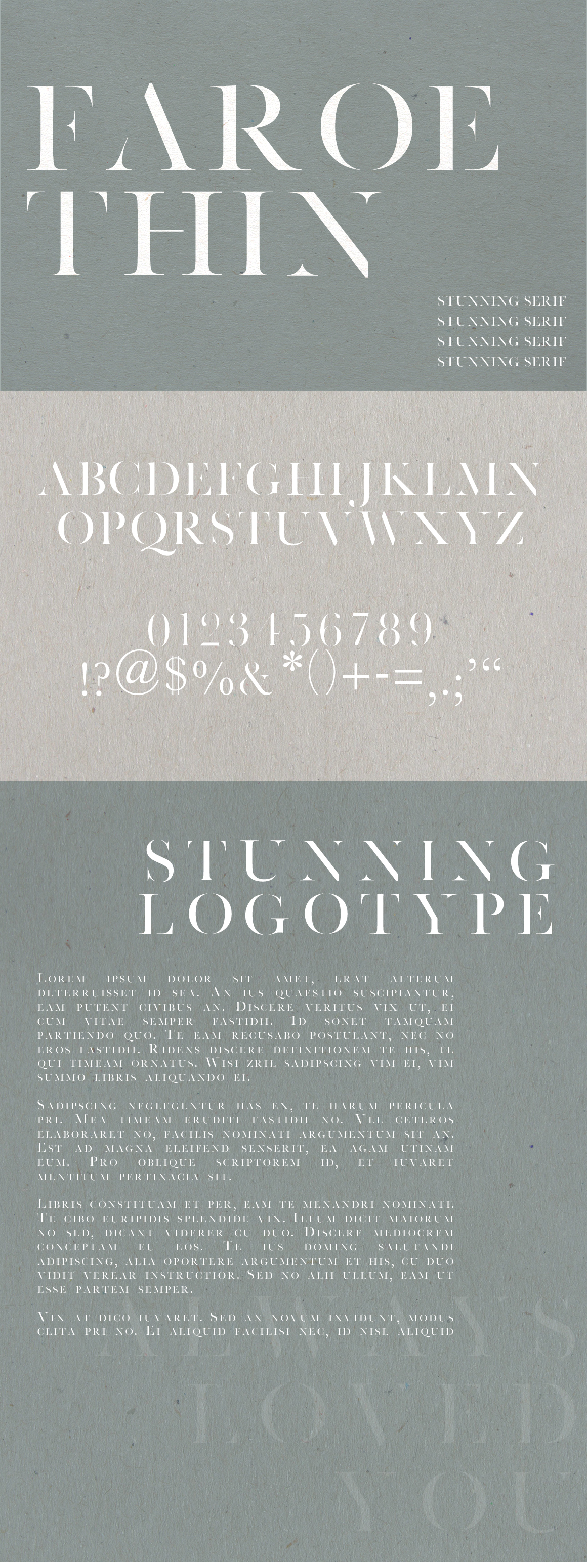 Faroe Thin | A Stunning Serif example image 5