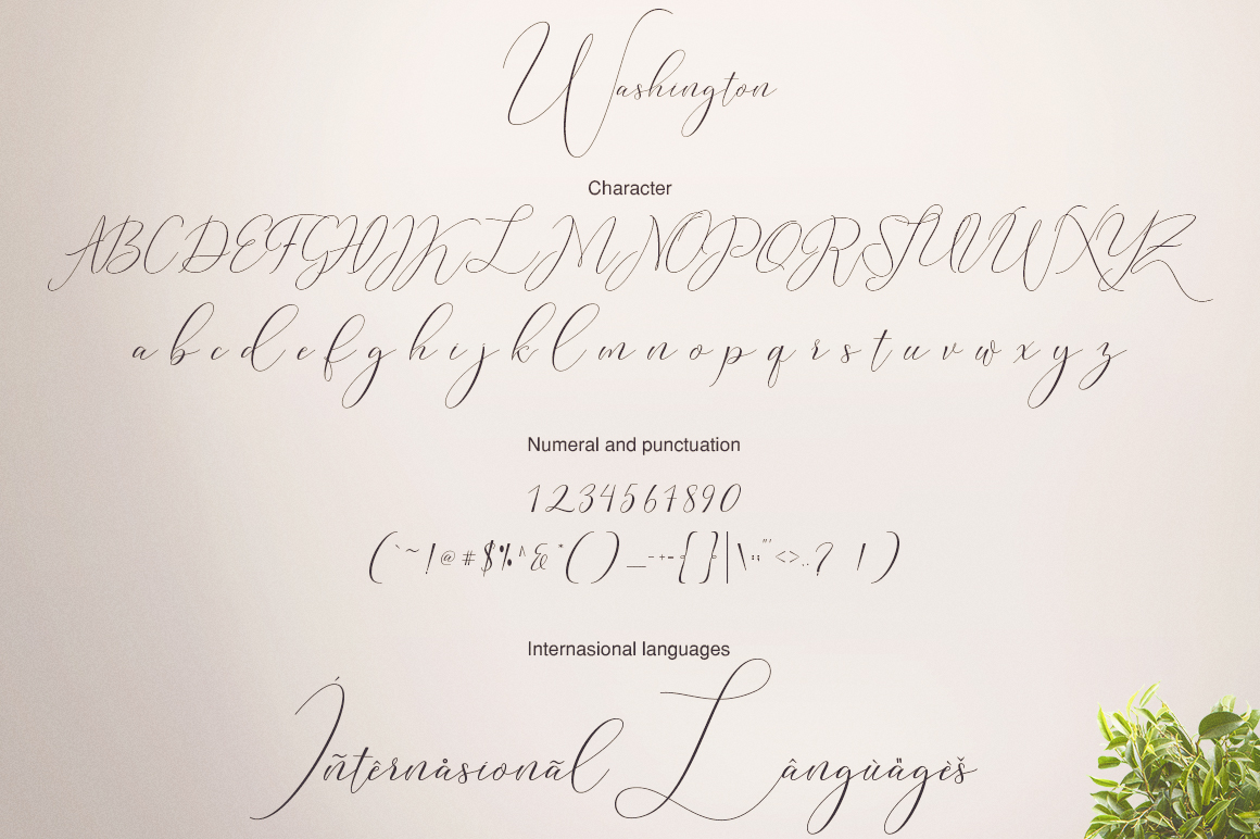 Washington Calligraphy Modern example image 10