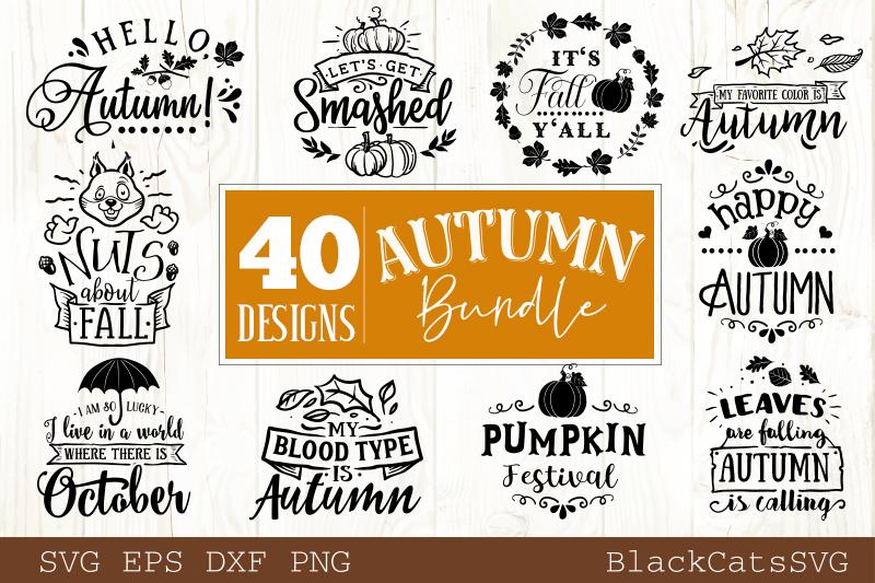 Autumn SVG bundle 40 designs Fall and pumpkins SVG bundle example image 2