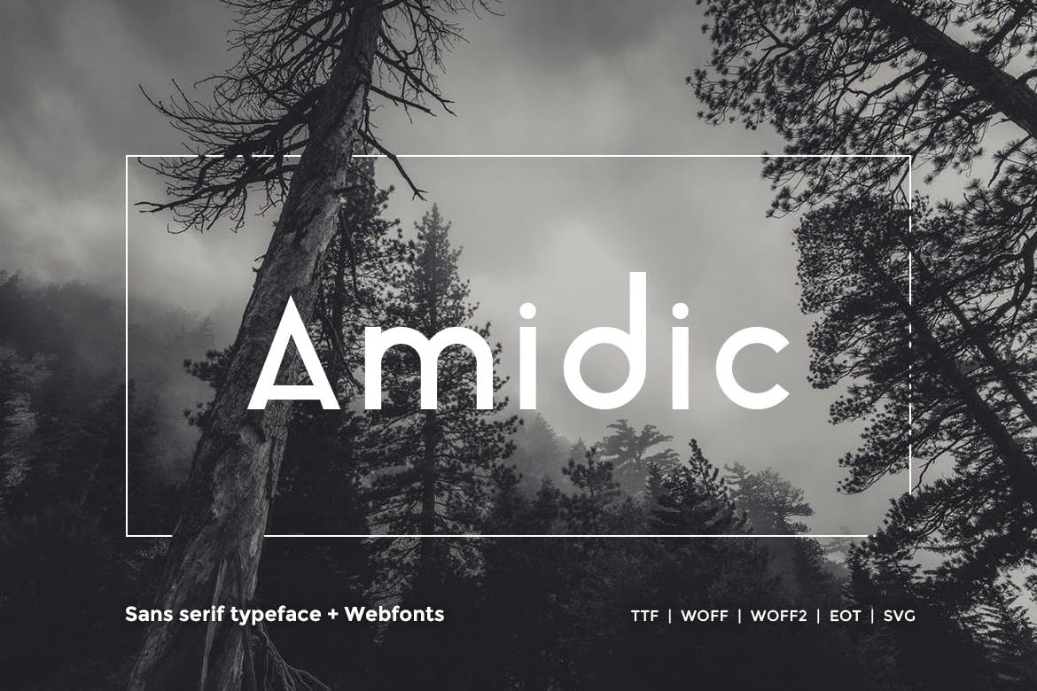 Best Selling 16 Webfonts. - 16 in 1 example image 13