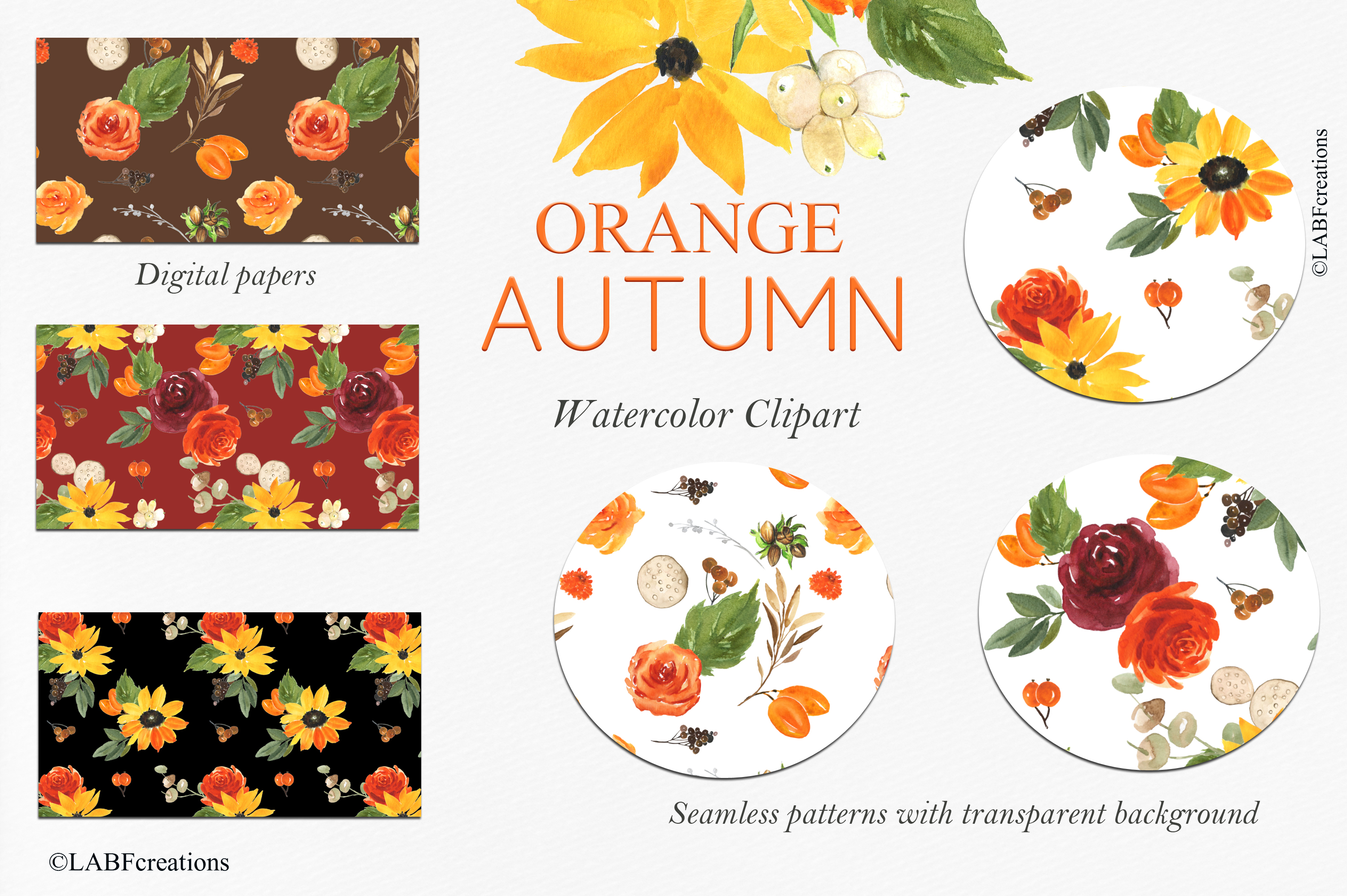 Orange, red and burgundy autumn flowers collection. example image 11