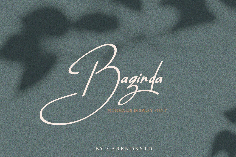 The Massive Bundle Of 46 Beautiful Fonts example image 6