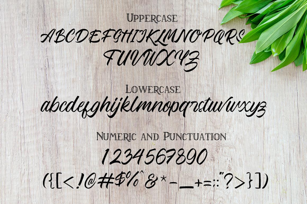 Vabeulit script font example image 7