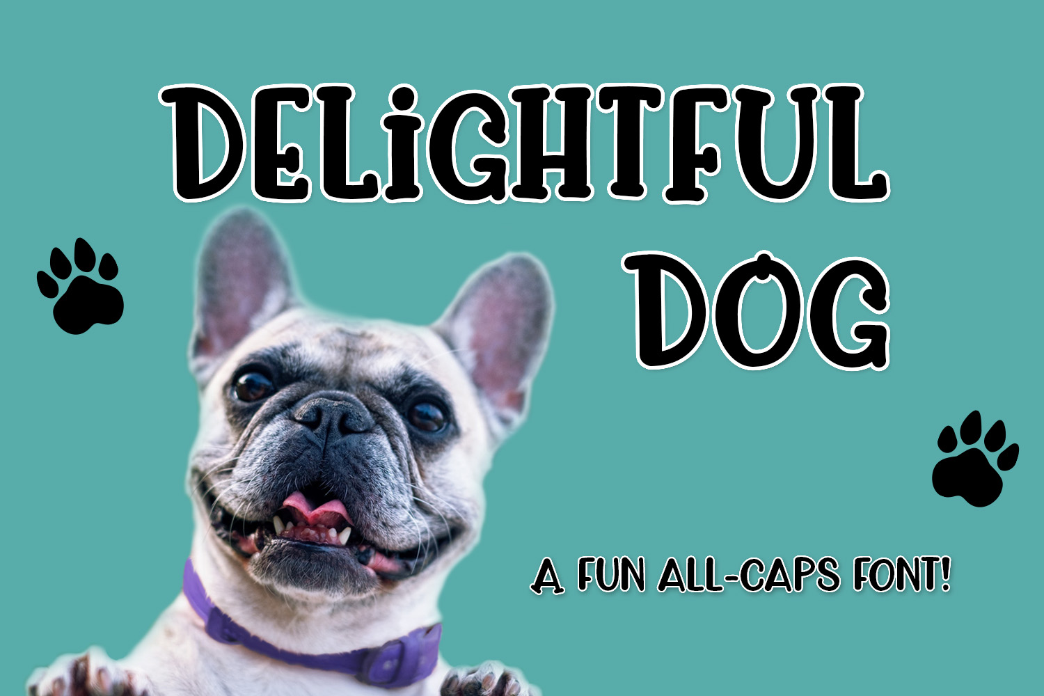 Delightful Dog example image 1