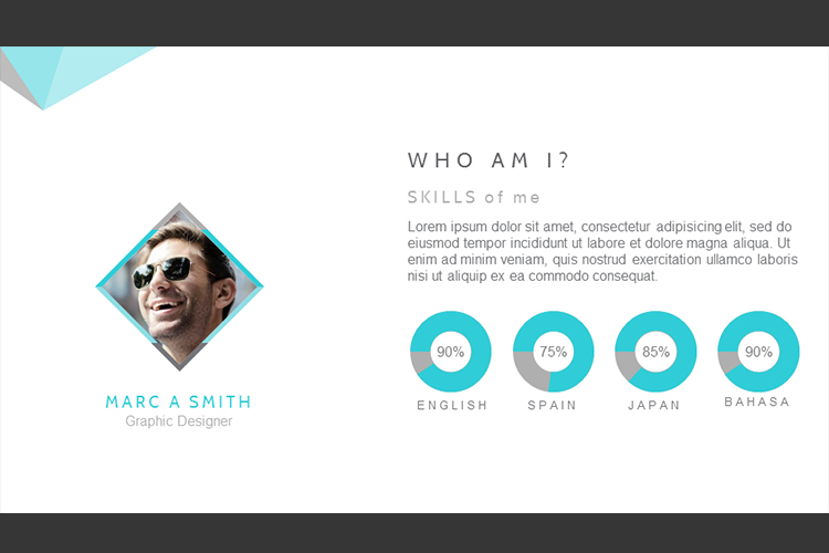 Resume Presentation Templates example image 20
