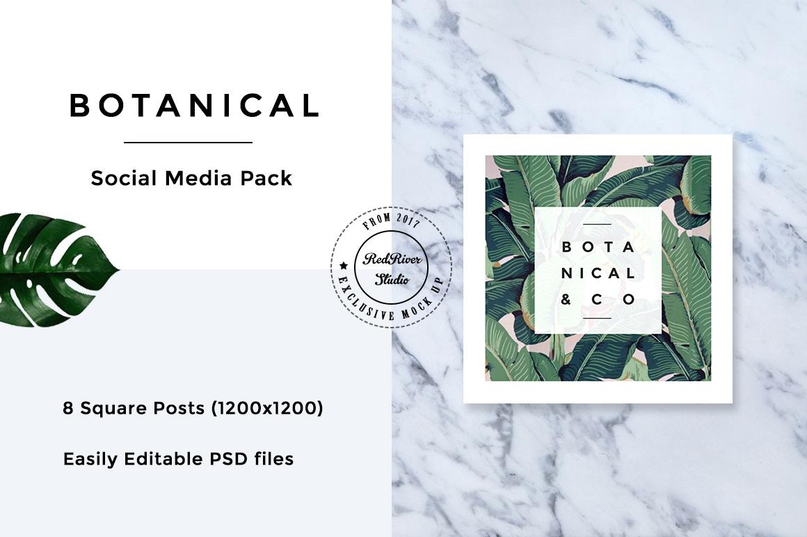 Botanical Social Media Pack example image 8