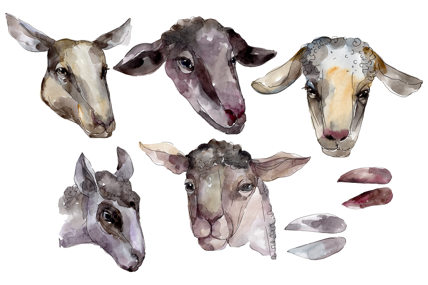 Farm animals Ram head Watercolor png example image 1