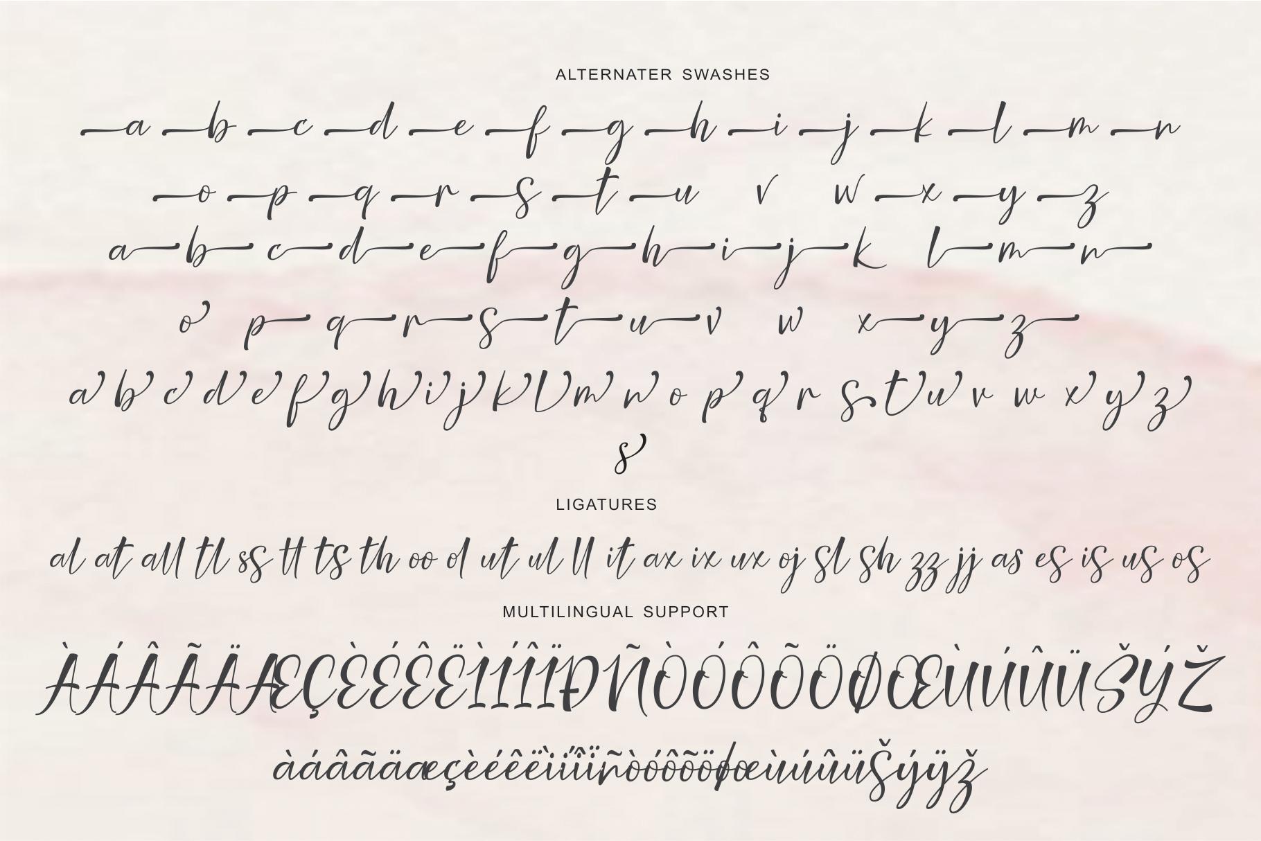 Nicolette Script example image 9