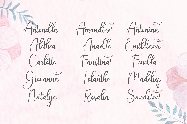 Andina - Modern Script Font example image 7