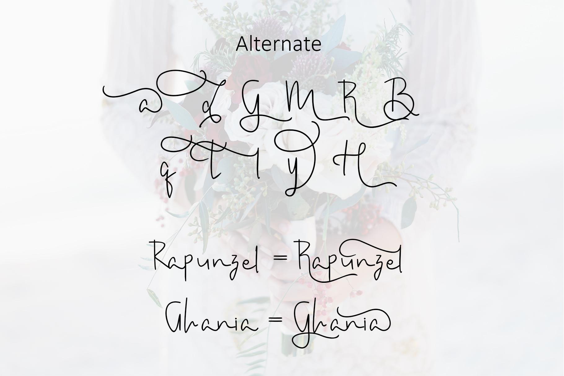 Amanda Script Font example image 8