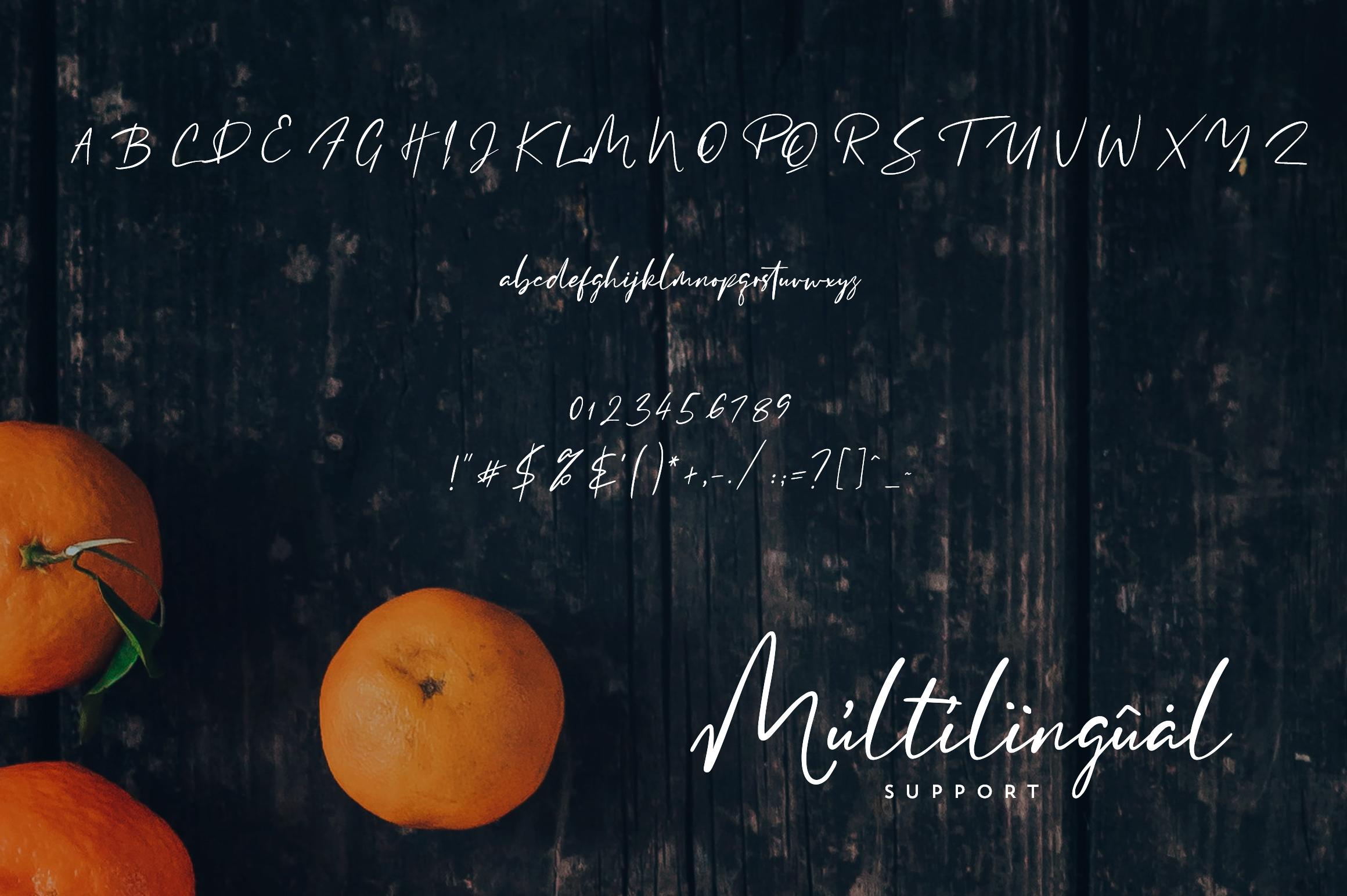 Clementine Script example image 9