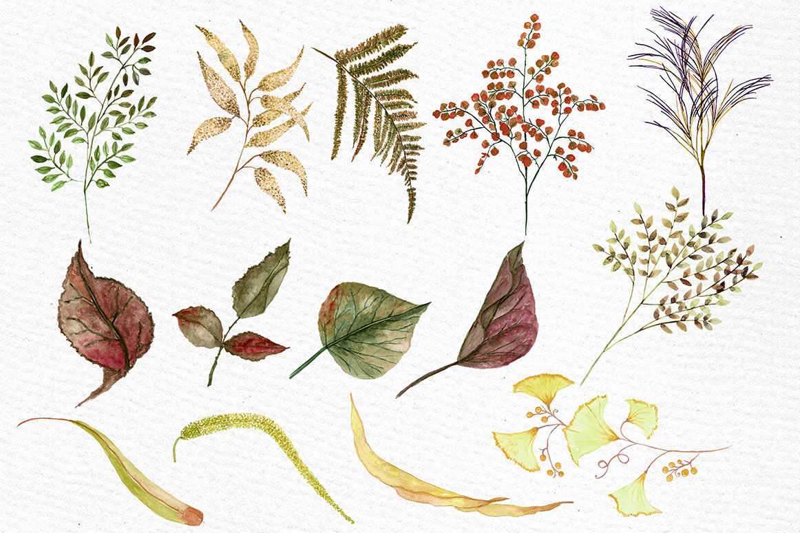 Watercolor Sepia flowers Clipart example image 2