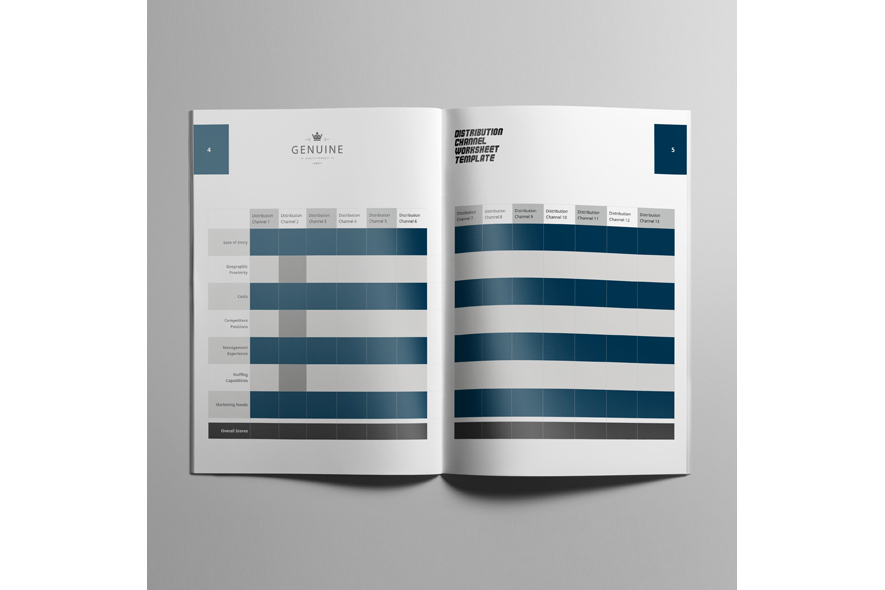 Distribution Channel Worksheet Template example image 5