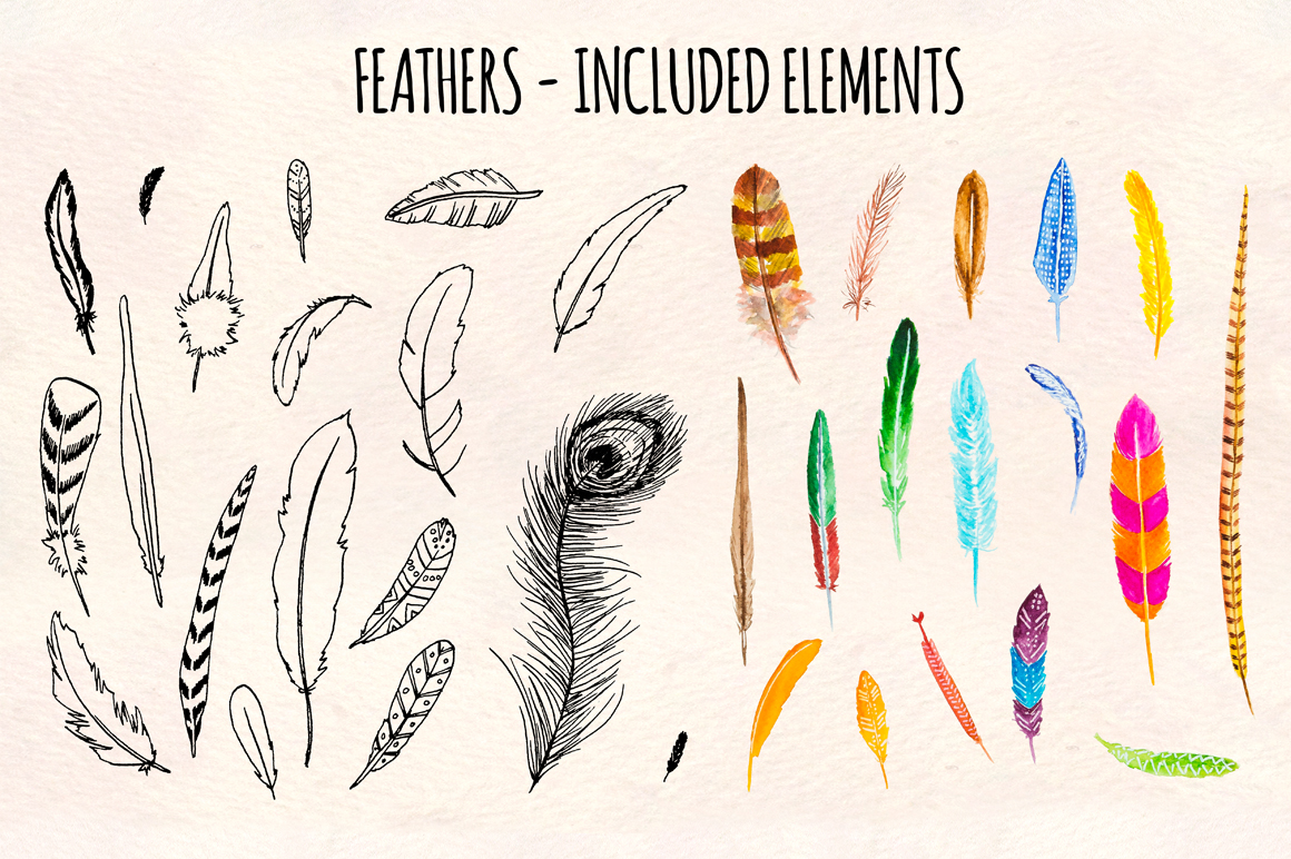 30 Bird Feathers Ink and Watercolor Graphics example image 2