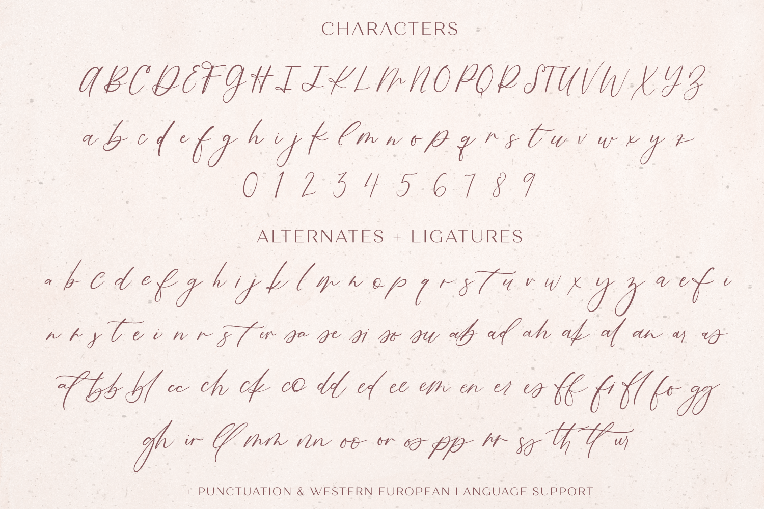 Fall Ember Calligraphy Script Font example image 11
