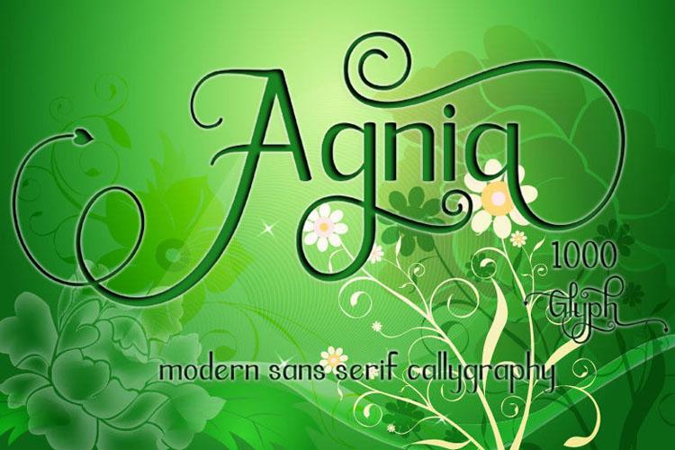 Agnia example image 1