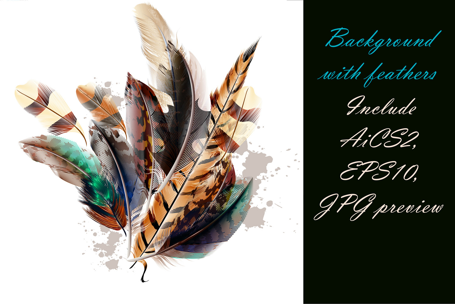 Colorful feather bundle. Vector illustrations and elements example image 7