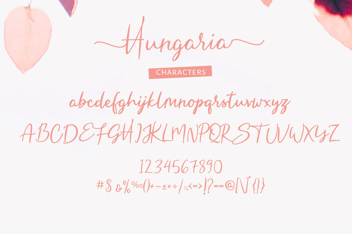 Hungaria - Sophisticated Script Font example image 6