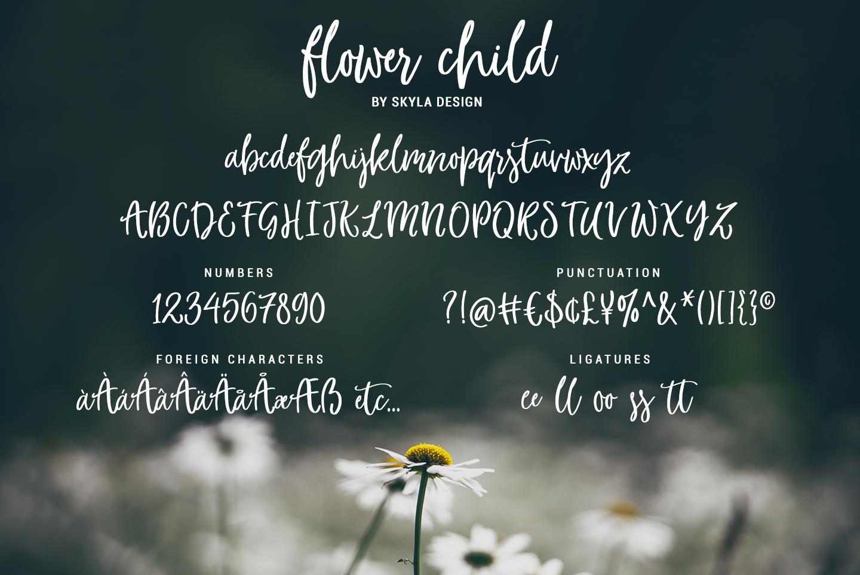 Whimsical modern brush font, Flower Child example image 4