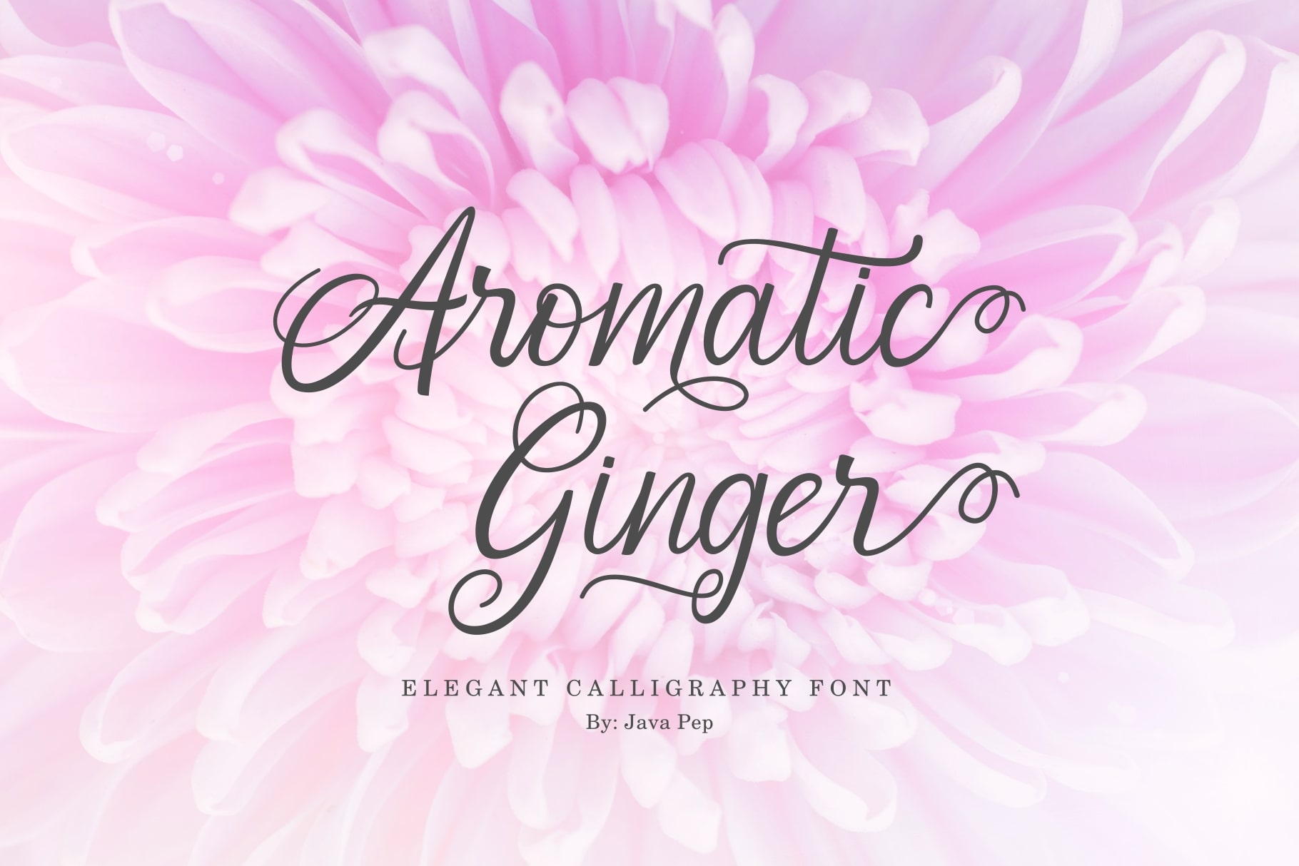 Aromatic Ginger example image 1