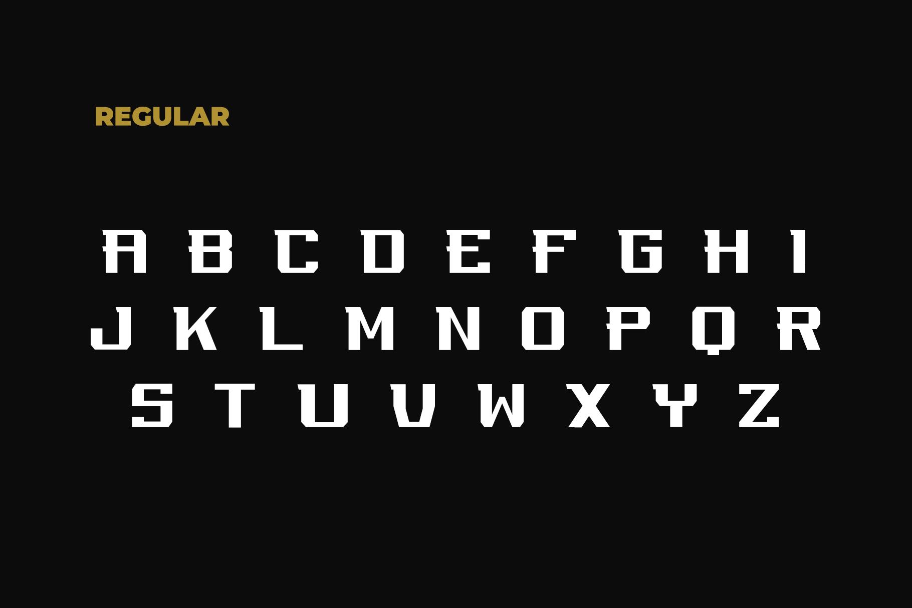 REGUILON Dispplay Font example image 3