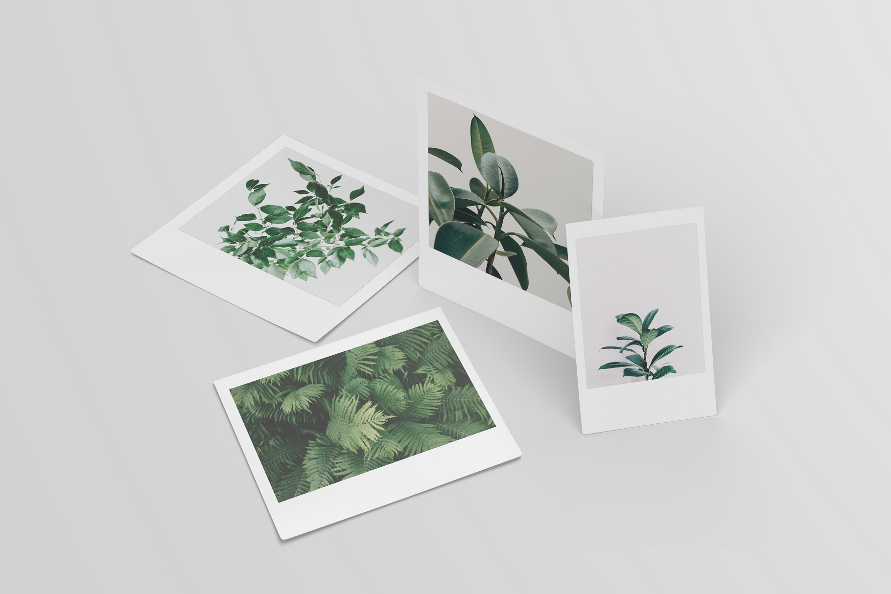 Polaroid Mockups Set example image 13
