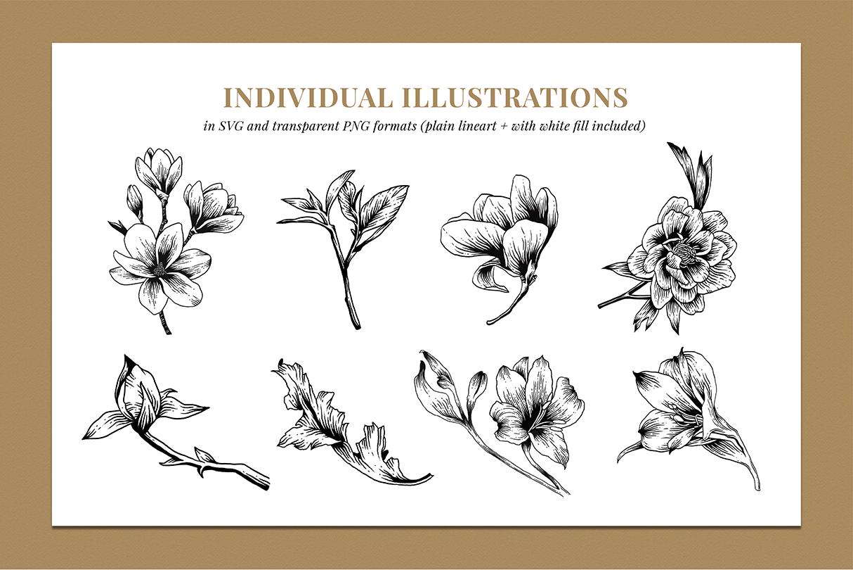 Botanical Illustration Bundle example image 3