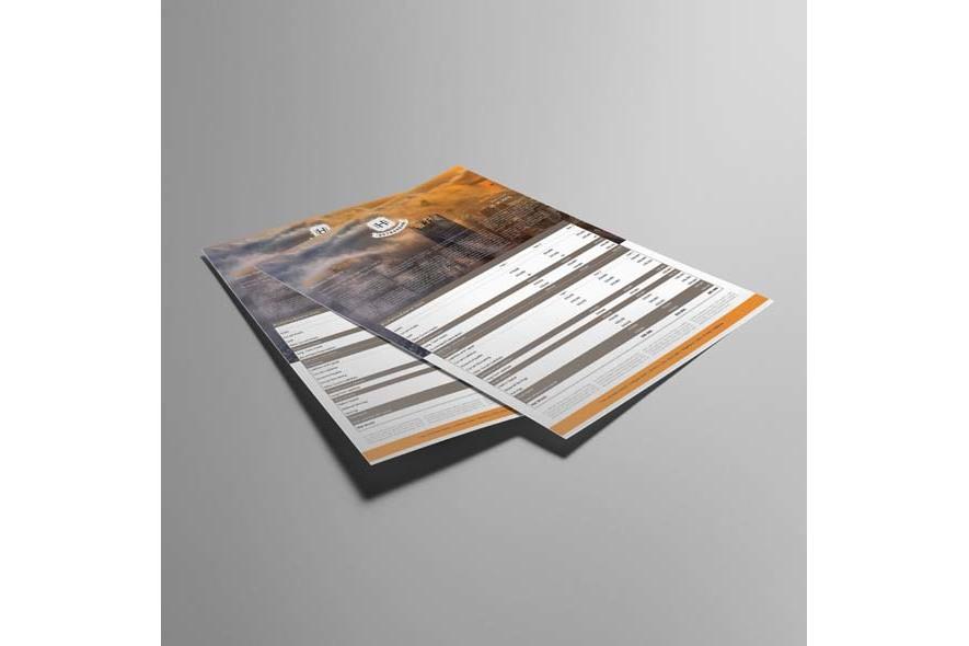 Company Balance Sheet A3 Template example image 4