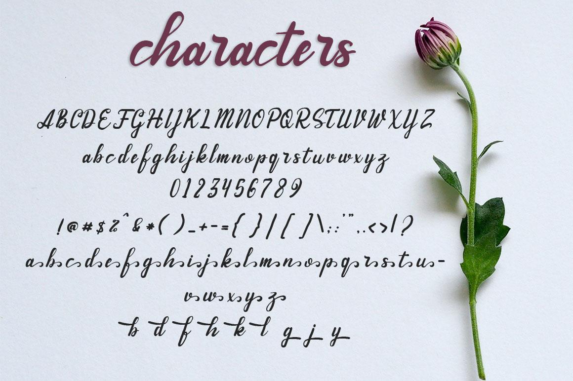 Andhewi Script Font example image 4