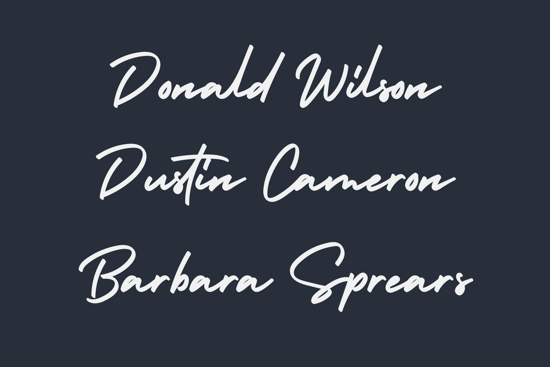 Holiday - Bold Signature Font example image 5
