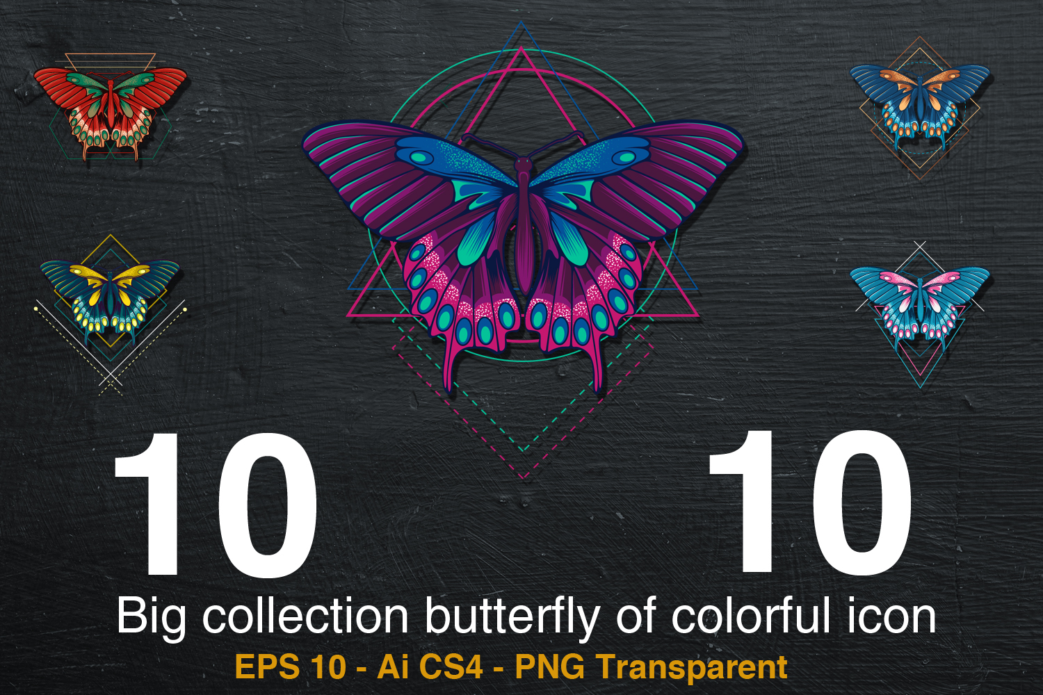 10 Big collection butterfly of colorful icon example image 1