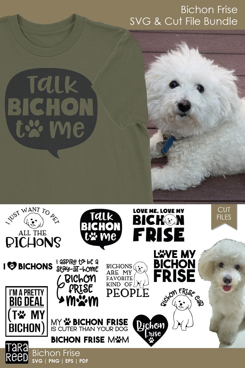 Bichon Frise - Dog Breed SVG and Cut Files for Crafters example image 2