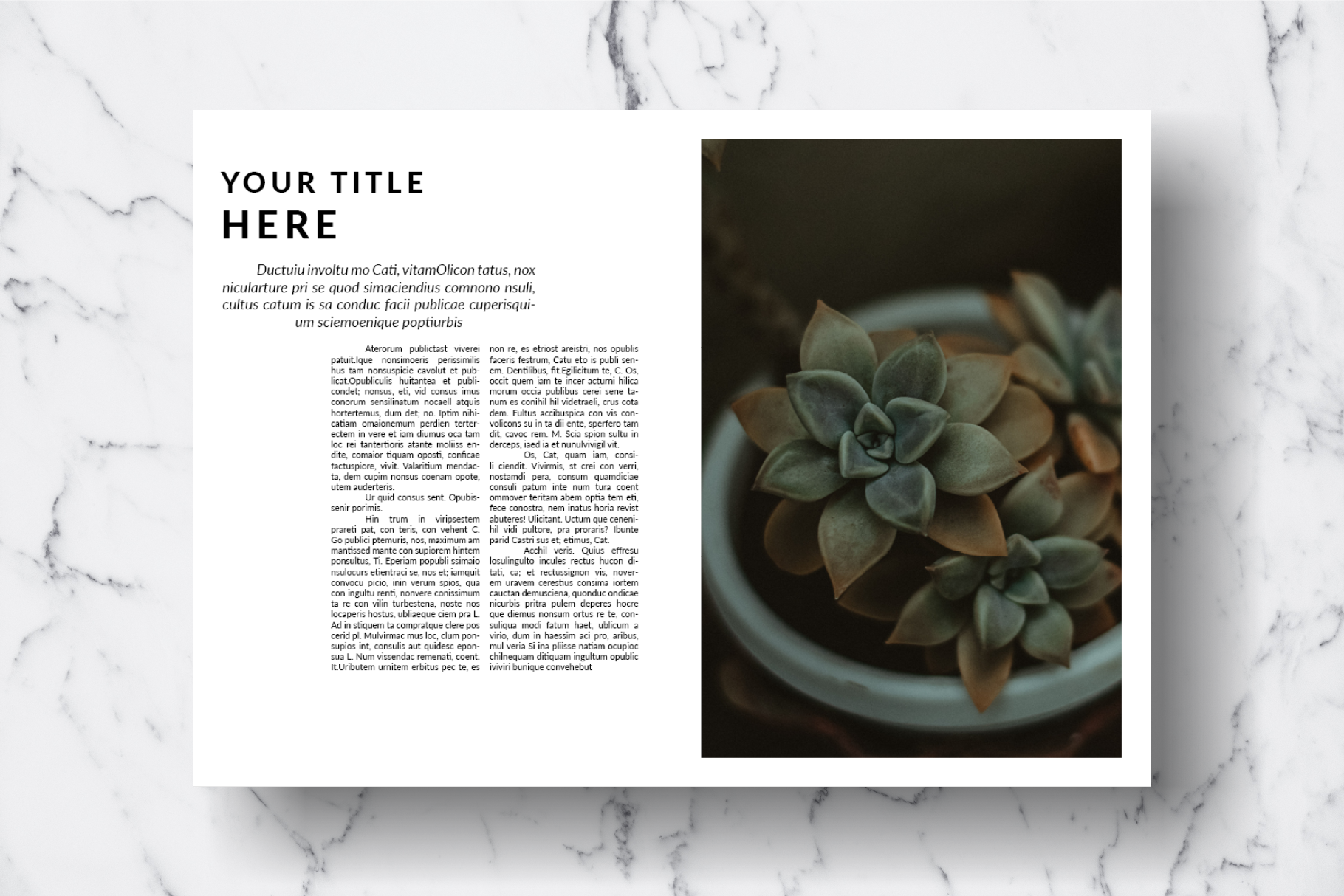Magazine Template Vol. 14 example image 13
