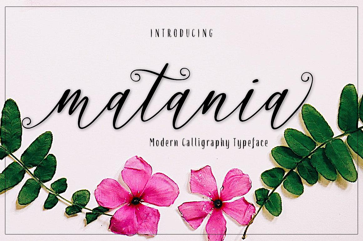 matania script example image 1