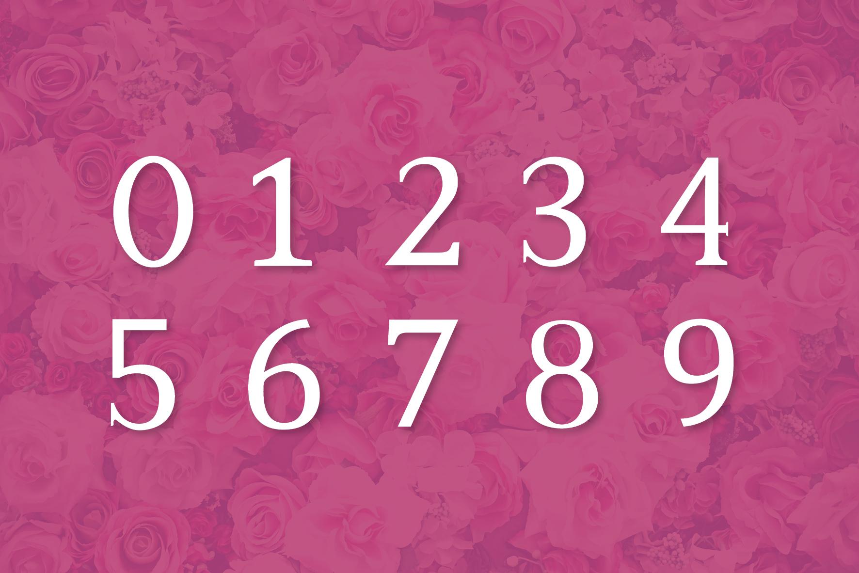 Rose Garden example image 6