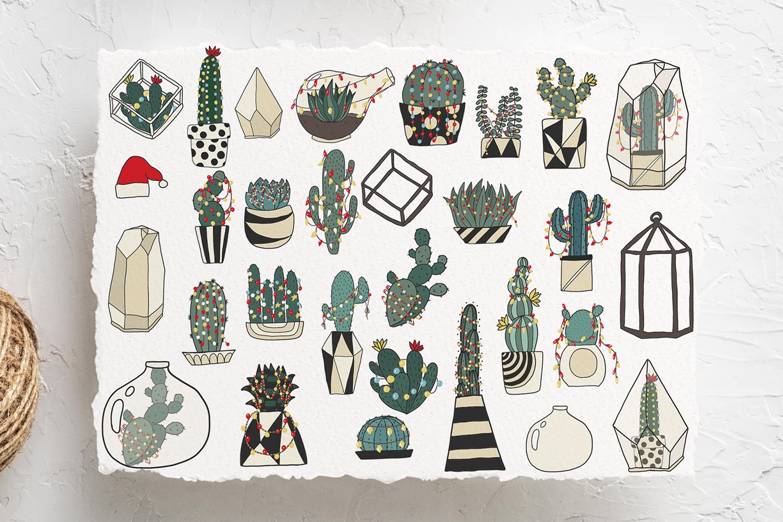 Christmas Cactus example image 2