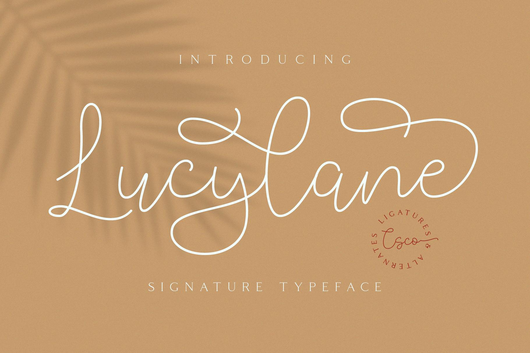Lucylane - Signature Typeface example image 2
