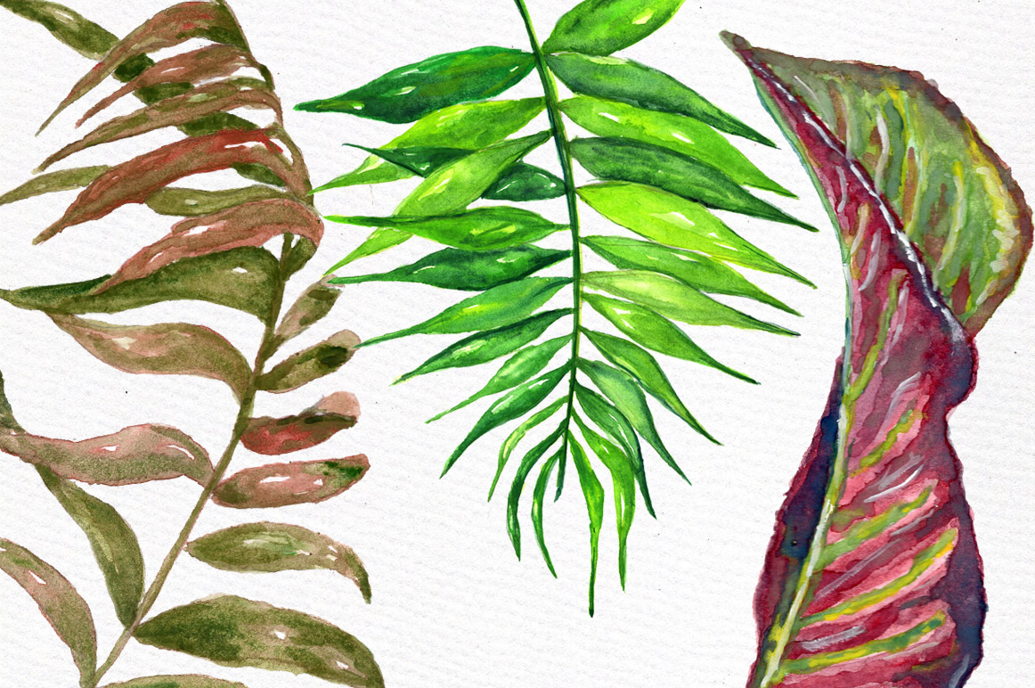 Tropical watercolor leaves example image 4