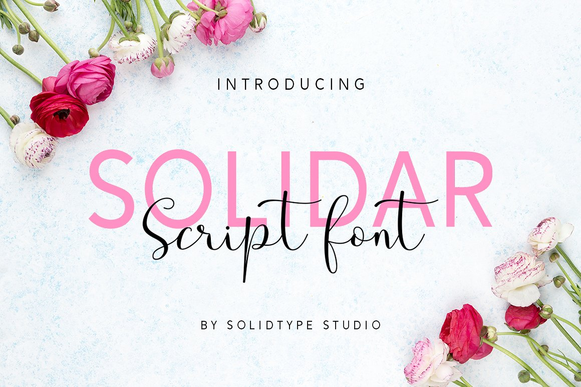 Solidar Font Family example image 2