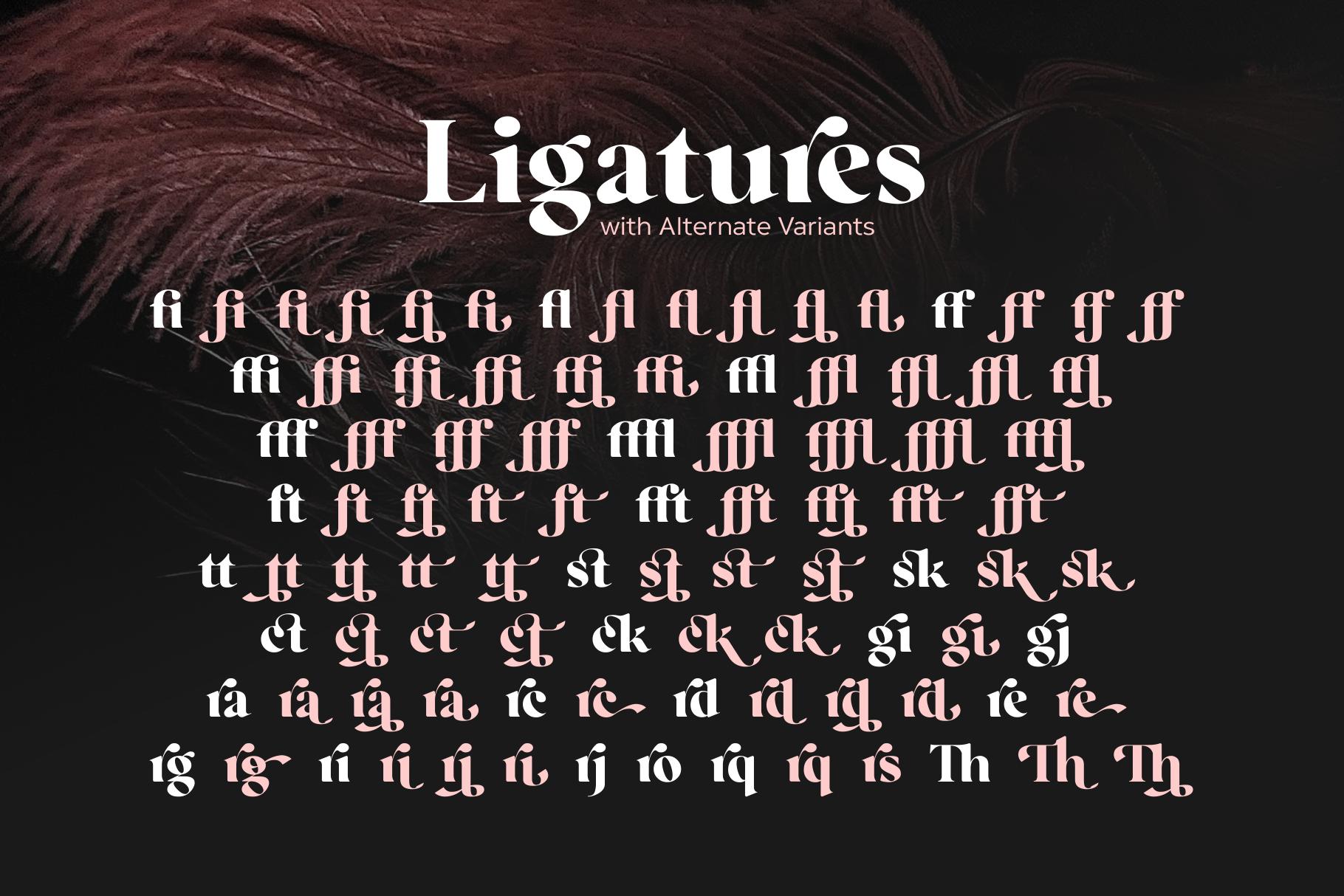 Regatto | Venetian Style Font example image 8