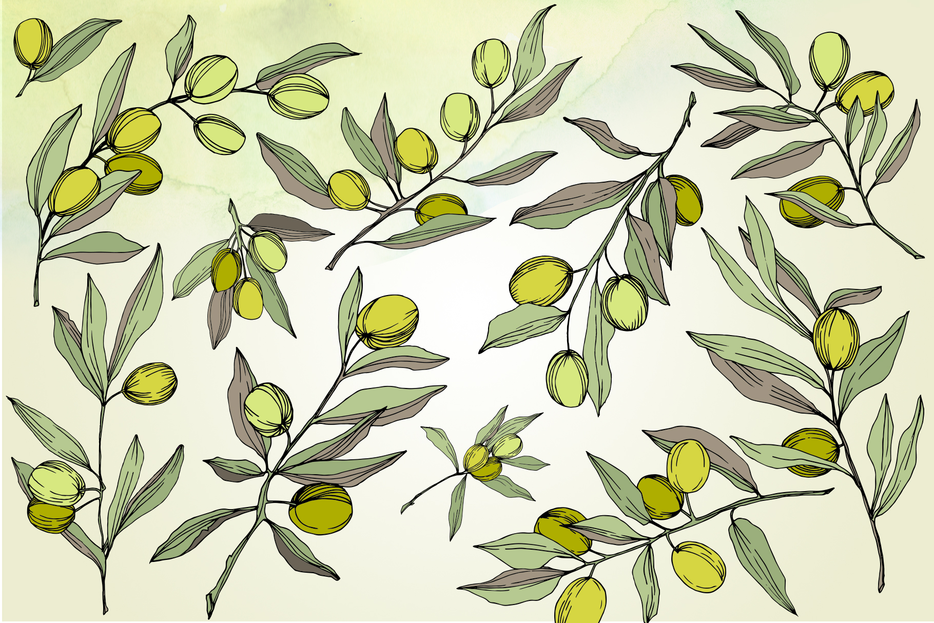 Olives vector EPS watercolor set   example image 3