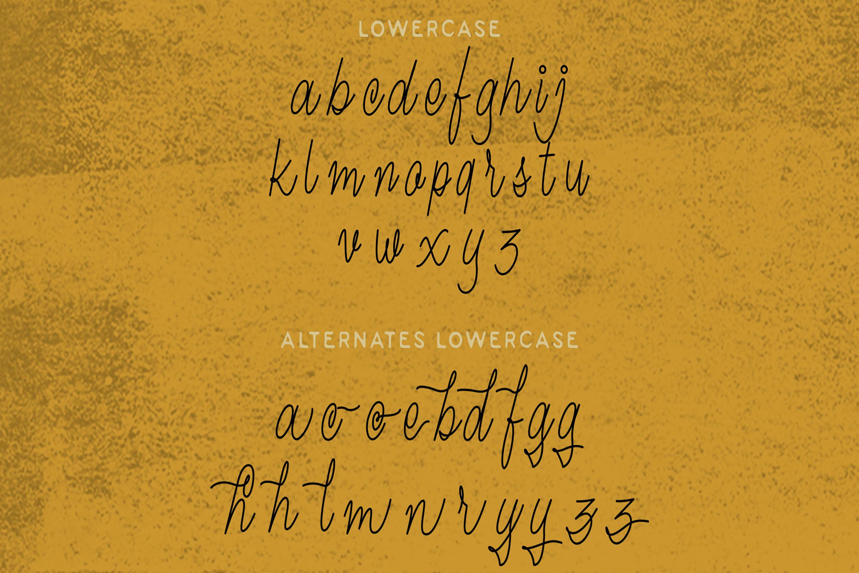 Magna - Monoline Script Font example image 12